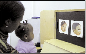 Image of an African American has Fagan Test of Infant Intelligence.